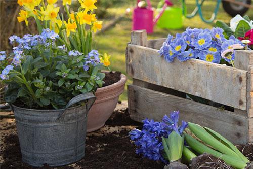 Leben wohnen garten alten und pflegeheim haus oyten - Garten und leben ladbergen ...
